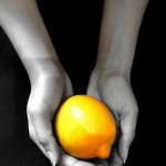 twilight lemon